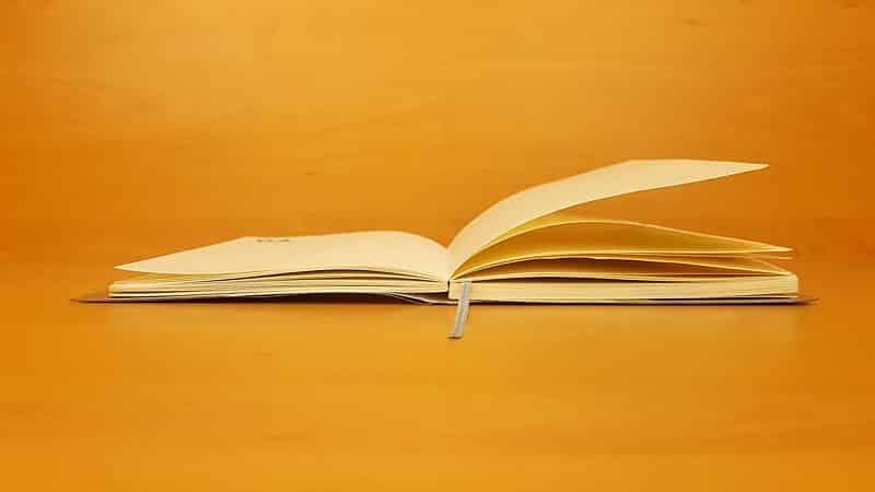 Professioneel een open dagboek zijn?
