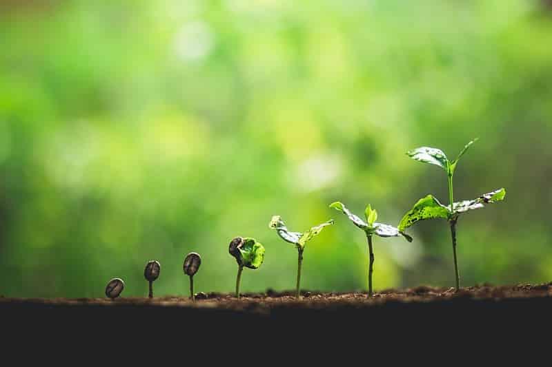 Zeven tools om te groeien in leven & werk